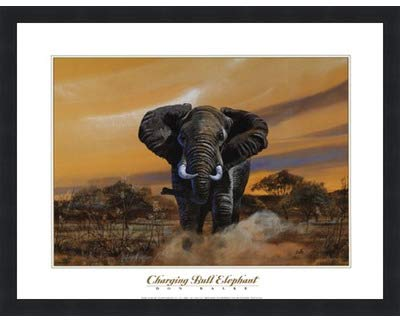 Poster Palooza Framed Charging Bull Elephants- 20x16 Inches - Art Print (Classic Black Frame)