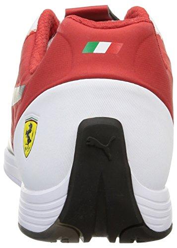 corsa rosso Sport 1 Blanc Sf Chaussures 4 Evospeed Blanc 03 Puma noir De adulte Mixte nTwqvUUfO