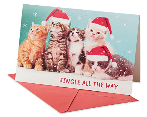 American Greetings 6027092 Deluxe Kitten Christmas Boxed Cards and Red Envelopes, 14-Count,