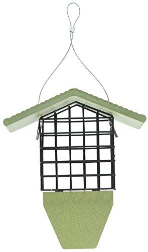 Birds Choice GSTP Suet Feeder with Tail Prop