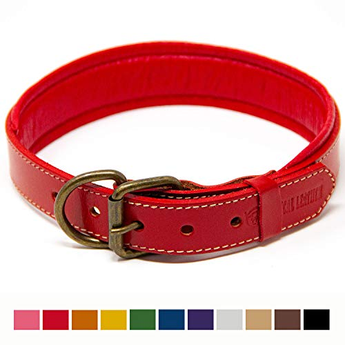 Medium Red Leather - Logical Leather Padded Dog Collar - Best Full Grain Heavy Duty Genuine Leather Collar - Red - Large