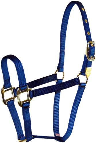 Hamilton 8D AVNV 3/4-Inch Nylon Arabian Horse Halter for 800 to 1100-Pound Horse, Navy Blue (Arabian Halter)