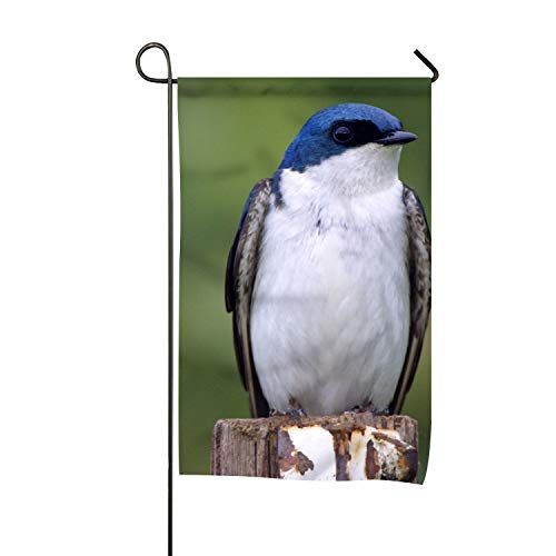 BYUII Outdoor Decorations Flag - Garden Flags for Yard Decorations, Polyester Double Sided Bird Tree Swallow, 16 X 30 Inch ()