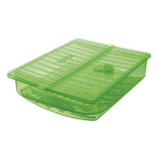 Cuisinart CTG-00-SSC Silicone Steam Case, , Green