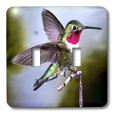 Hummingbird Toggle Light Switchplate - lsp_960_2 Birds - Hummingbird, Bird - Light Switch Covers - double toggle switch