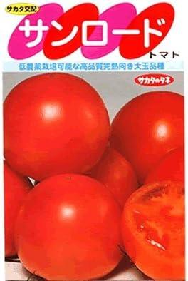 サンロード サカタの大玉トマト種です