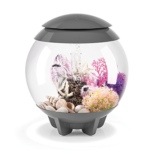 biOrb HALO 15 Aquarium with MCR LED Light – 4 Gallon, Grey