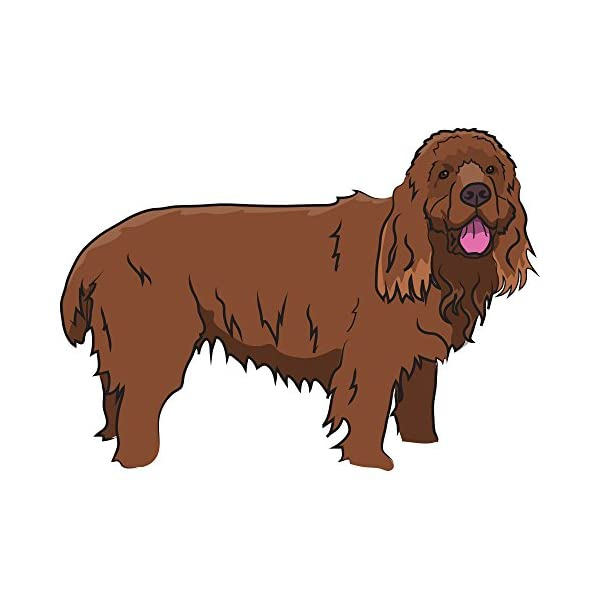 "Sussex Spaniel Decal | Indoor/Outdoor | Dog Lover Super Cute Sticker for SUV Windows, Dorm Rooms, Bedroom, Offices | SignMission Personalized Gift | 12"" 1"