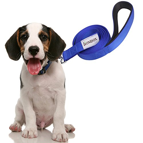 Homdox-Durable-Dog-Leash-2-Layer-Pet-Lead-Padded-Handle-6-Feet-Long-1-Inch-Wide-for-Large-Medium-Dogs-Common-Dog-Leash-Blue