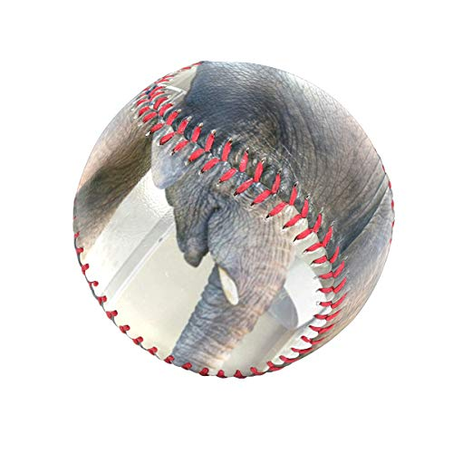 DERTYV Big Elephant Baby Personalized Low Impact Safety Tee Balls Indoor Baseball or Outdoor Baseballs for League Play, Practice, Competitions, Gifts, Keepsakes, Arts and Craftsophies, and Autographs ()