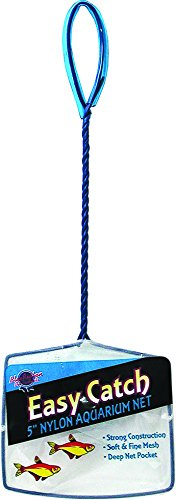 (Blue Ribbon Pet Products ABLEC5 Easy Catch Fish Net, 5-Inch)