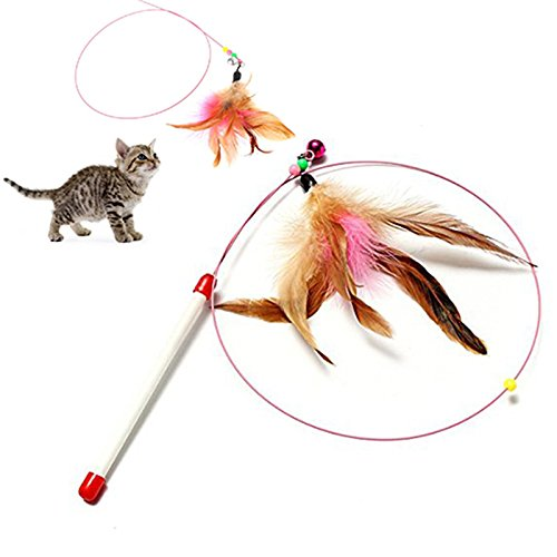 Fishfly Cat Teaser Cat Wire Dangler Wand Toys with Beads Bells and Feather Interactive 4