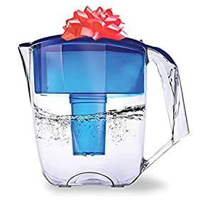 Ecosoft Water Filter Pitcher Jug - BPA-Free - Commercial Grade Ecomix Filter Cleaners - 8 Cups Purified Water, 10 Cup Capacity with Extra Free Cartridge, for Home & Office Filtration, Blue