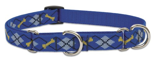 """LupinePet Originals 3/4"""" Dapper Dog 14-20"""" Martingale Collar for Medium and Larger Dogs"""