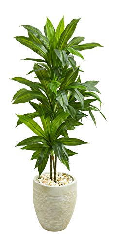 - Artificial Plant -4 Foot Dracaena with Sand Colored Planter Silk Plant