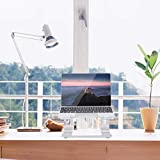 NICEAO Laptop Stand, Aluminum Laptops Stand for