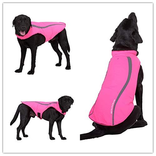 Escudo Ansiedad perro, perros chaquetas a prueba de agua a prueba ...