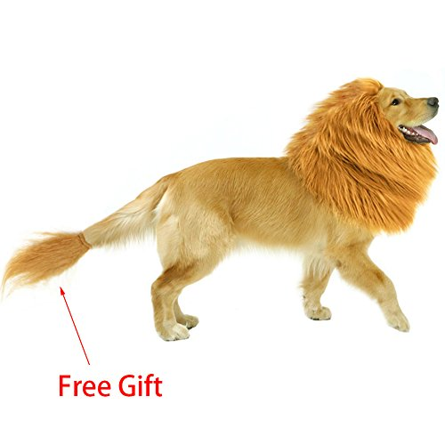 Homemade Dog Costumes (Furpaw Halloween Lion Mane for Dog | Lion Costume/ Wig/ Hat/ Hair with Free Gift [Lion Tail])
