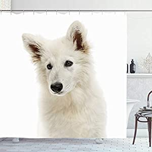 Ahawoso Shower Curtain 72x78 White Closeup Shepherd Dog Puppy Looking Animals No Wildlife Away On Canine Carnivore Cut Domestic Waterproof Polyester Fabric Bathroom Bath Decor Set with Hooks 3