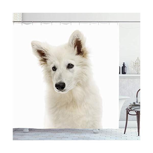 Ahawoso Shower Curtain 72x78 White Closeup Shepherd Dog Puppy Looking Animals No Wildlife Away On Canine Carnivore Cut Domestic Waterproof Polyester Fabric Bathroom Bath Decor Set with Hooks 1