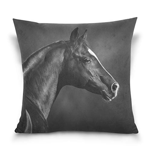 Holisaky Portrait Black Arabian Horse Decorative Square Throw Pillow Covers Cases Home Décor Bed Sofa Couch Car 16 x 16 inch by Holisaky