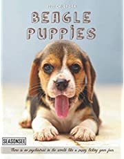 Beagle Puppies Calendar 2022: Gifts for Friends and Family with 18-month Monthly Calendar in 8.5x11 inch