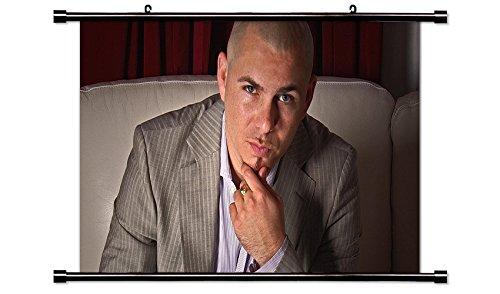 pitbull the singer - 7