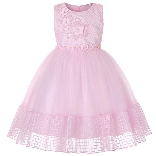 WUEZIFHDB Girls Dresses Kids Embroidery Flwer Printed Dress Girls Tutu Ruffles Party Dress Kids Wedding Pageant Dresses for Girls (X566,Pink,100) -