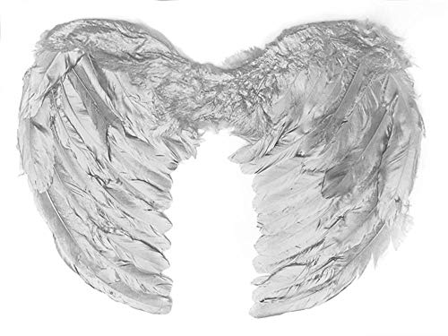Classic Dog Cat Angels & Demons Wings Pet Dog Cat Costume Accessory Real Feather Wings White, Party Costumes Feather Angel -
