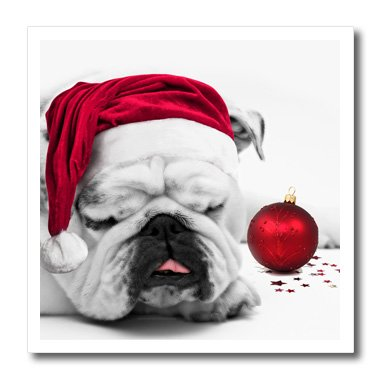 Bulldogs Pillow Santa (3dRose ht_62826_2 Sleeping Bulldog in Santa Hat Christmas Photo Courtesy of Esther Matheus-Iron on Heat Transfer Paper for White Material, 6 by 6-Inch)