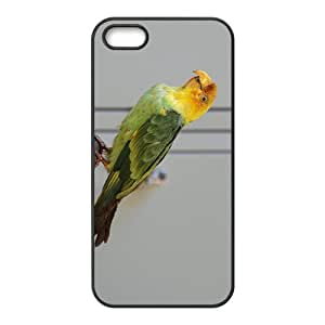 My Green Parrot Hight Quality Plastic Case for Iphone 5s by Maris's Diary