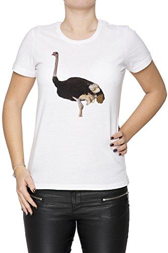 Autruche Blanc Coton Femme T-shirt Col Ras Du Cou Manches Courtes White Women's T-shirt