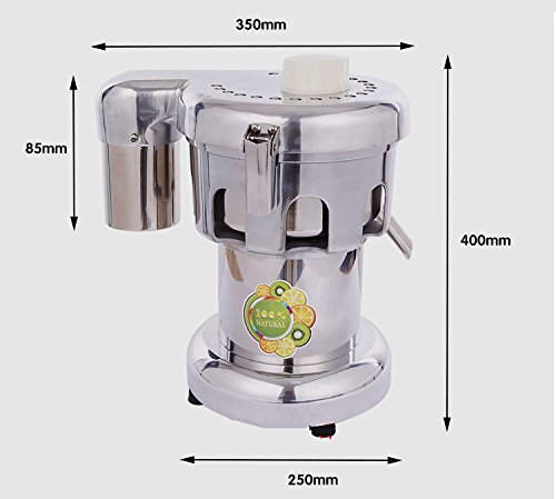 80-100kg/hr Professional stainless steel Commercial Juice Extractor Vegetable Juicer Electric Juice Machine juice squeezer 110V/220V