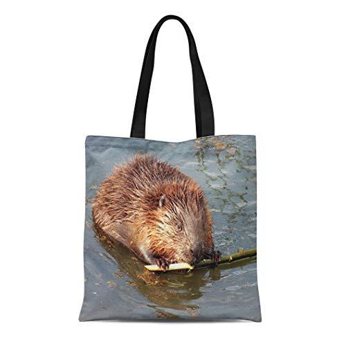 Semtomn Canvas Tote Bag Shoulder Bags Ordinary Beaver River Latin Castor Fiber Is Semi Aquatic Women's Handle Shoulder Tote Shopper ()