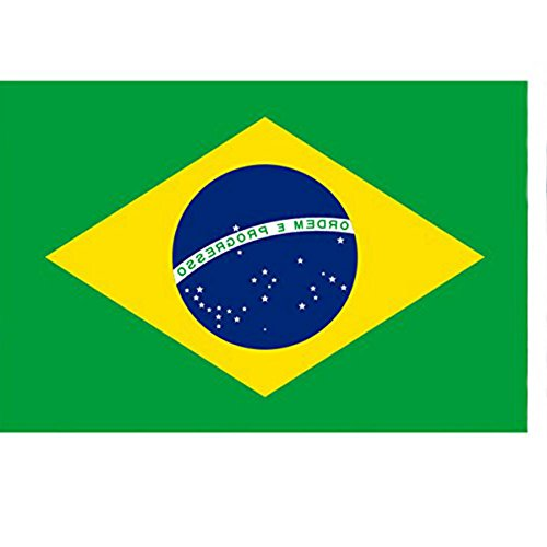 AKOAK 6 Sheets(12 pcs) National Banner Flags Tattoo for Football Fans,Cheer for Your Favorite Team (Brazil)