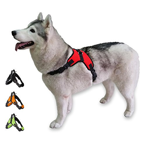 CosyMeadow Escape Proof Dog Harness - Padded No Pull Everyday Soft Sport Vest | Secure To Car Seat Belt | No Choke | Sturdy Handle | 2017 New & Improved | Prime | Red Large Breed