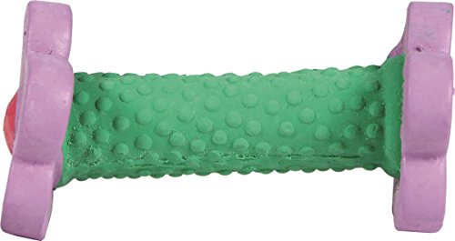 Coastal Pet Products 83207 FLDDOG Li'L Pals Dumbbell Dog Toy Green/Purple, 4 In Coastal Lil Pals Toy