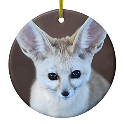 Amazon com: MurielJerome Worlds Cutest Fennec Fox Ceramic