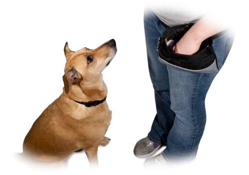 PetSafe-Treat-Pouch-Sport-Black