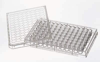 Costar 3596 96-Well Cell Culture Plates with lid, Flat Well, Treated, sterile, -