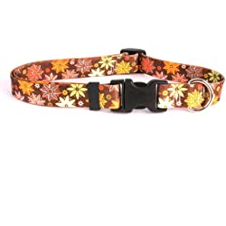 """Autumn Flowers Dog Collar - Size Extra Small 8"""" to 12"""" Long - Made In The USA"""