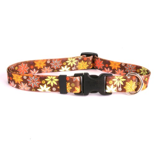 "Autumn Flowers Dog Collar - Size Small 10"" to 14"" Long - Made In The USA"