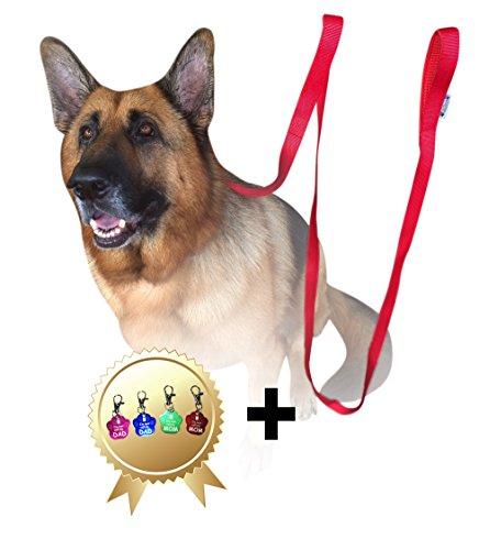 Jet Storm Rot Haustier Hundeleinen mit 2 Handgriffen für großen mittelgroßen Hund