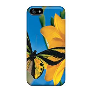 New Fashion Premium Cases Covers For Iphone 5/5s - Summertime Visitor