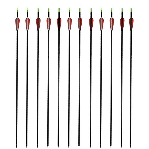 GPP Carbon 30-Inch Arrows with Field Points Replaceable Tips (12 Pack) for Recuve Bow & Compound Bow
