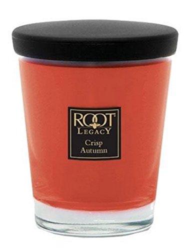 Root Veriglass Scented Jar Candle, Large, Crisp Autumn