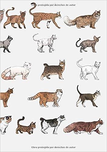 Libretas de Puntos: Cuadernos con Puntos, Cuaderno A5 Puntos, Cuaderno Dot, Cuaderno Dot Grid - Cuaderno Gato #22 - Tamaño: A5 14.8 x 21 cm - 110 . ...