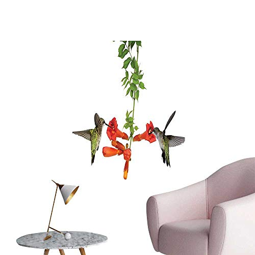 Nectar Vineyards (Wall Decoration Wall Stickers Hummingbirds Sip Nectar from Vine Blossoms Summertime Print Artwork,32