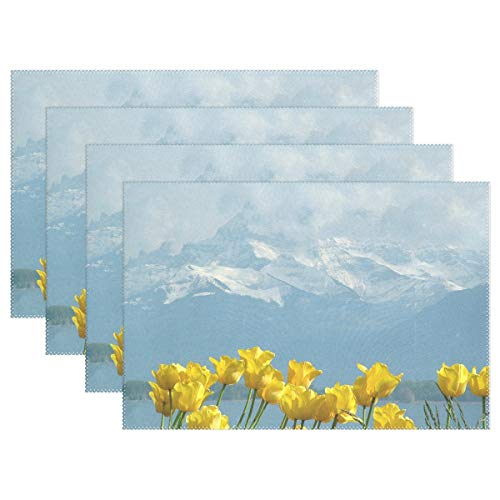 JTMOVING Tulips Montblanc Lake Geneva Montreux Switzerland Placemats Set of 4 Heat Insulation Stain Resistant for Dining Table Durable Non-Slip Kitchen Table Place Mats