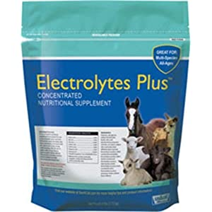 633132 Electrolytes Plus Multi-Species Supplement, 6 lb 6